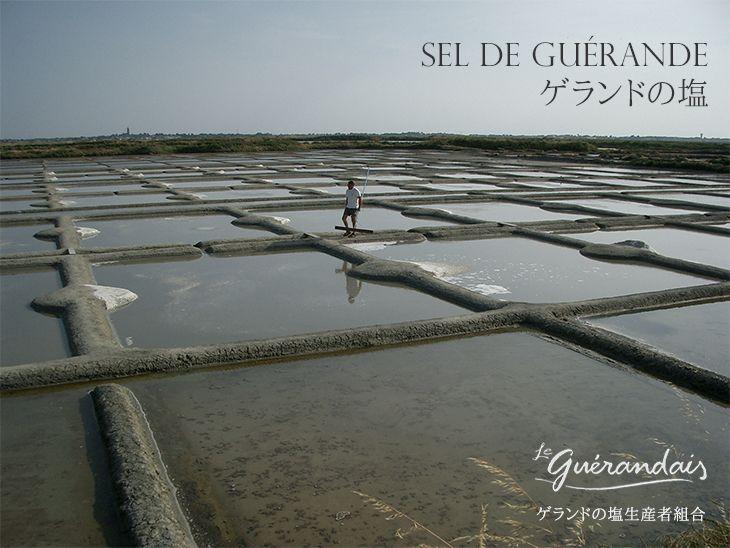 ゲランドの塩/ Sel de Guerande